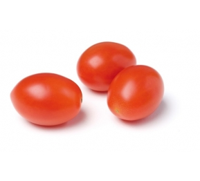 MINI PLUM TOMATOES